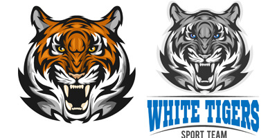 Морда тигра на белом фоне