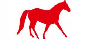 Трафарет лошади #1