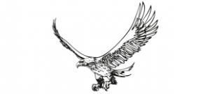 Наклейка Орел №1