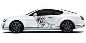 наклейка тигра на авто
