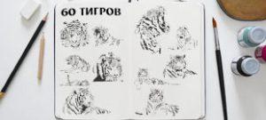 60 тигров