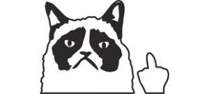 Сердитый кот Флиппин вектор