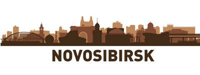 Силуэт города Новосибирска в векторе