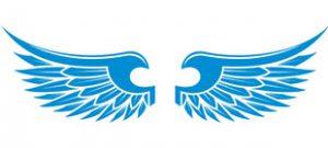 Крылья в векторе скачать