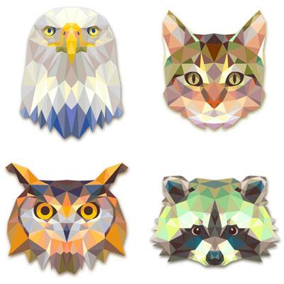 орел, сова, кошка и енот в векторе