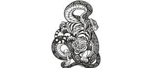 Змея и тигр в векторе