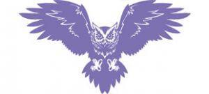 Летящая сова в векторе