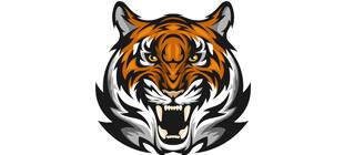 Морда тигра в векторе